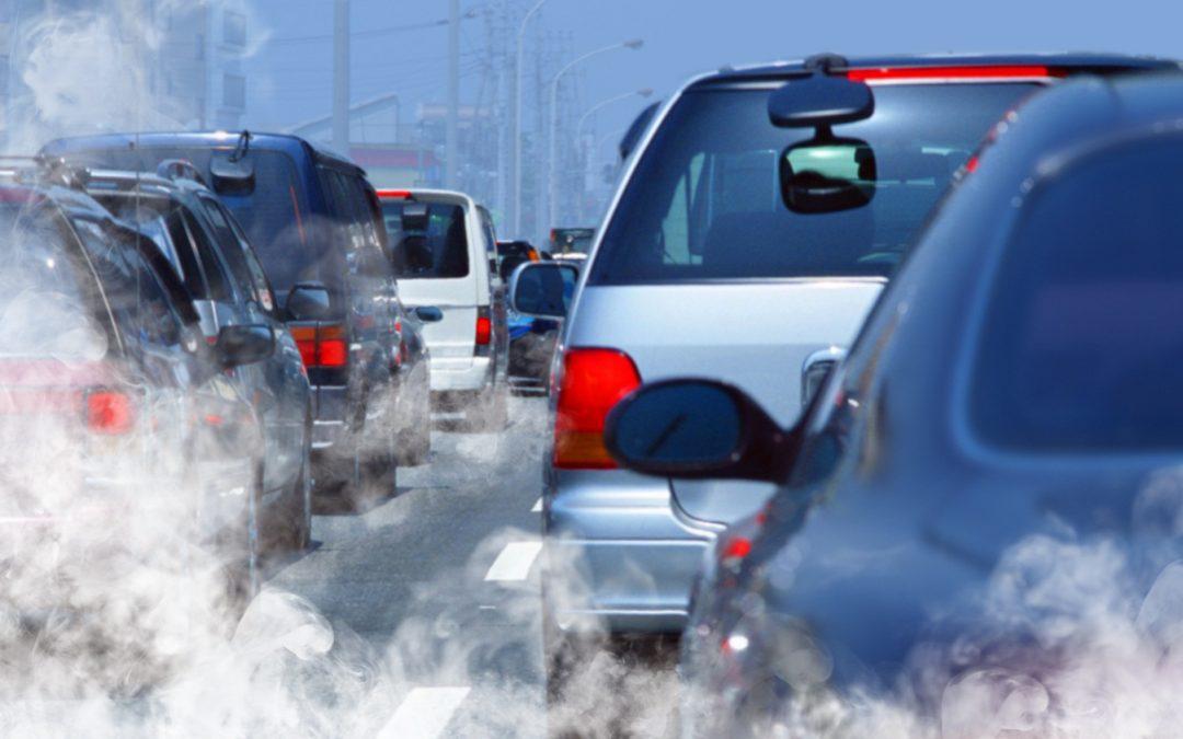 Poluição ambiental pode causar infertilidade