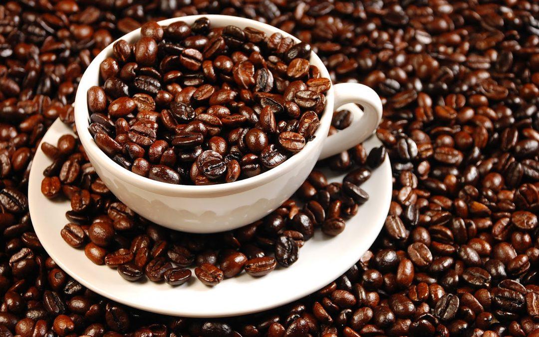 A interferência da cafeína sobre a fertilidade