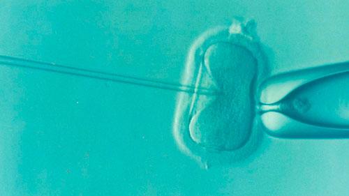 Causas da infertilidade são desconhecidas em 20% dos casos