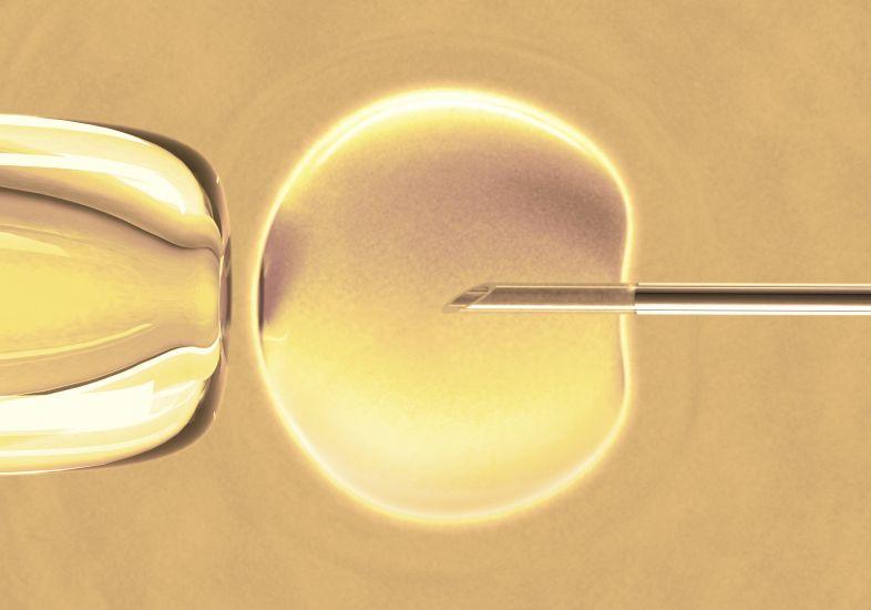 Tratamento para fertilidade: quanto antes, melhor