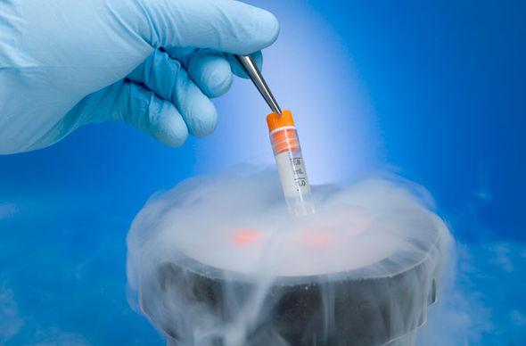 O congelamento de óvulos e a gravidez