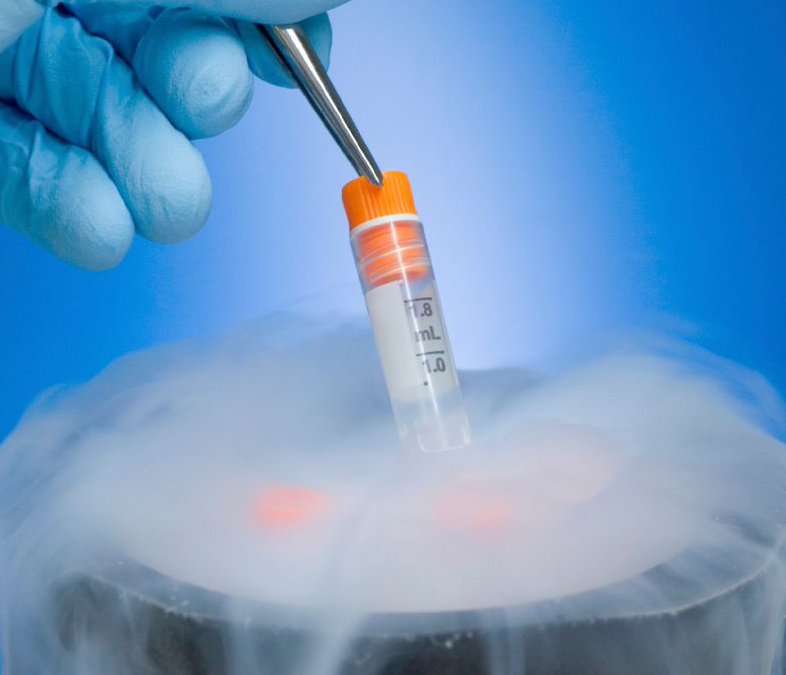 Congelamento de óvulos: quanto antes, melhor