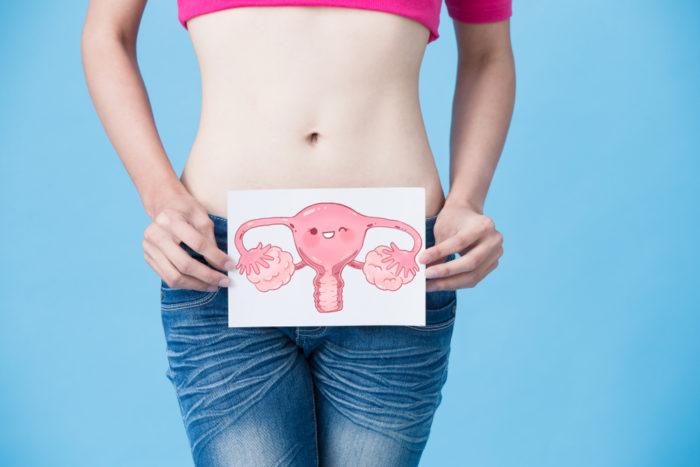 Reserva ovariana: entenda o que é e os fatores envolvidos